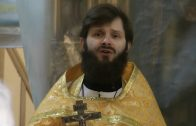 Проповедь в праздник Торжества Православия. Священник Константин Лазукин