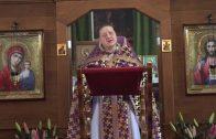 Мужской хор Московского ставропигиального Свято-Данилова монастыря — Не отврати лица Твоего